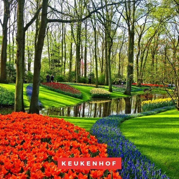 Keukenhof, Europe