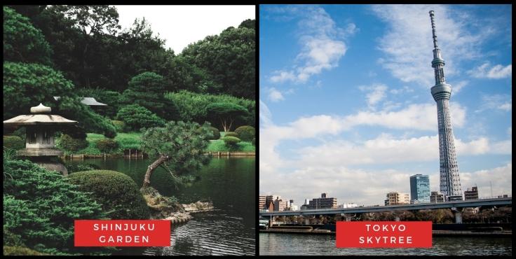 Shinjuku Garden & Tokyo Skytree