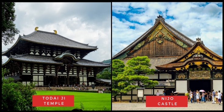Todai Ji Temple & Nijo Castle